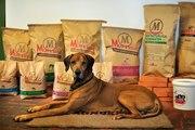 Корм для  собак, номер один в Мире - Magnusson
